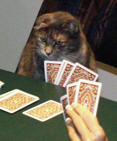 Agatha Playing Cards