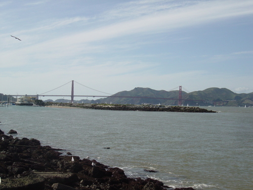 Golden Gate bridge from the water's edge