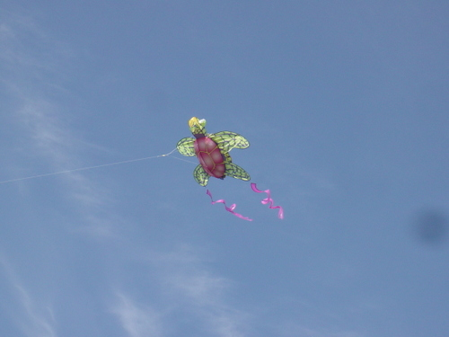 Whimsical Turtle Kite