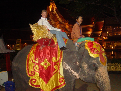 Elephants are fun to ride